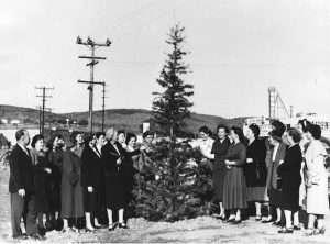 1952 Tree Planting