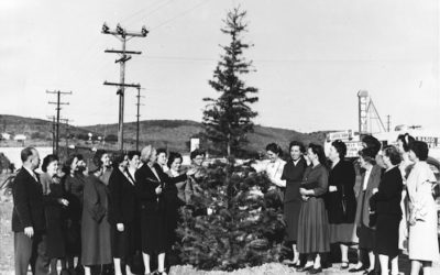 1952: Oh Little Town of Lemon Grove – The way we were